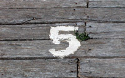5 Steps for Your Marketing Strategy